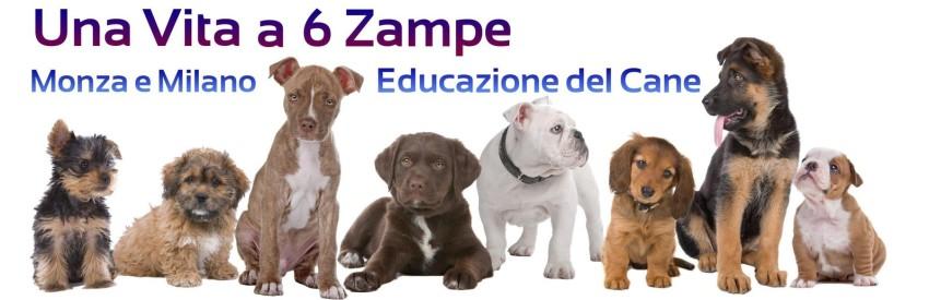 Educazione del cane Milano