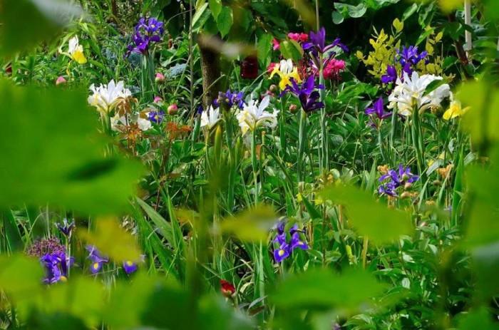 Il giardino e il suo tempo